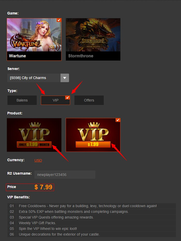 VIP subscription.jpg